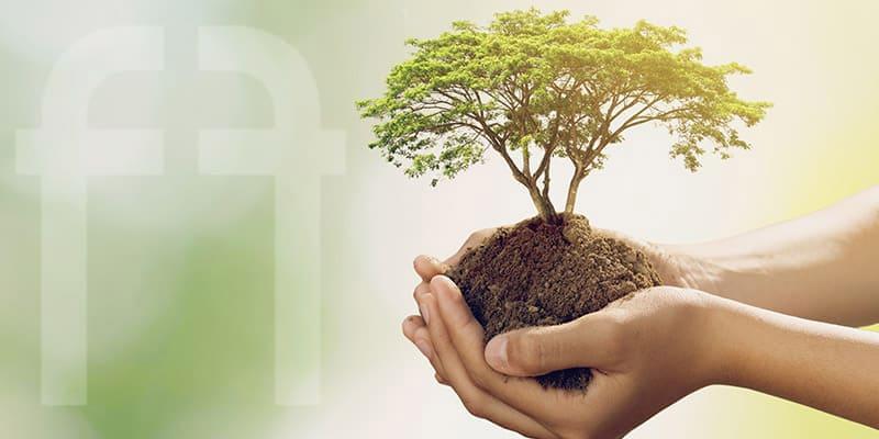 Federformazione per la sostenibilità
